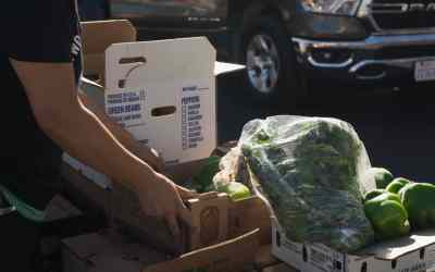 Free Methodist Stories – Partnering to Fight Food Insecurity