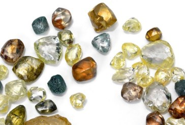 40 companies register for Angola's first rough diamond auction