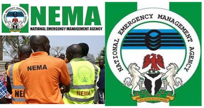 Image result for NEMA officials
