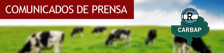 Derrumbe de la lecheria argentina