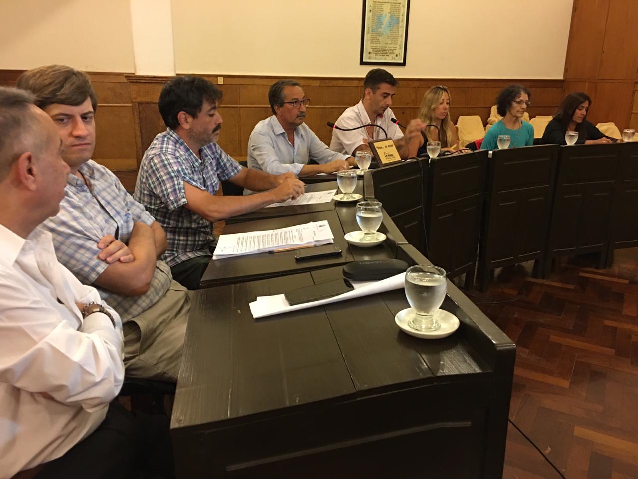 Audio. Primera Sesión del Concejo Deliberante del año.