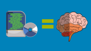 software and brain