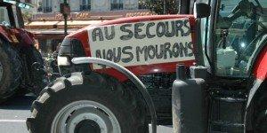 1343608_3_31cd_manifestation-d-agriculteurs-qui-veulent