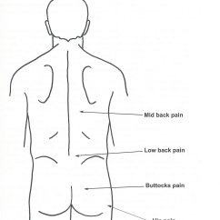 Gluteus Muscles Diagram Pain Emotional Cycle Of Abuse Lower Back