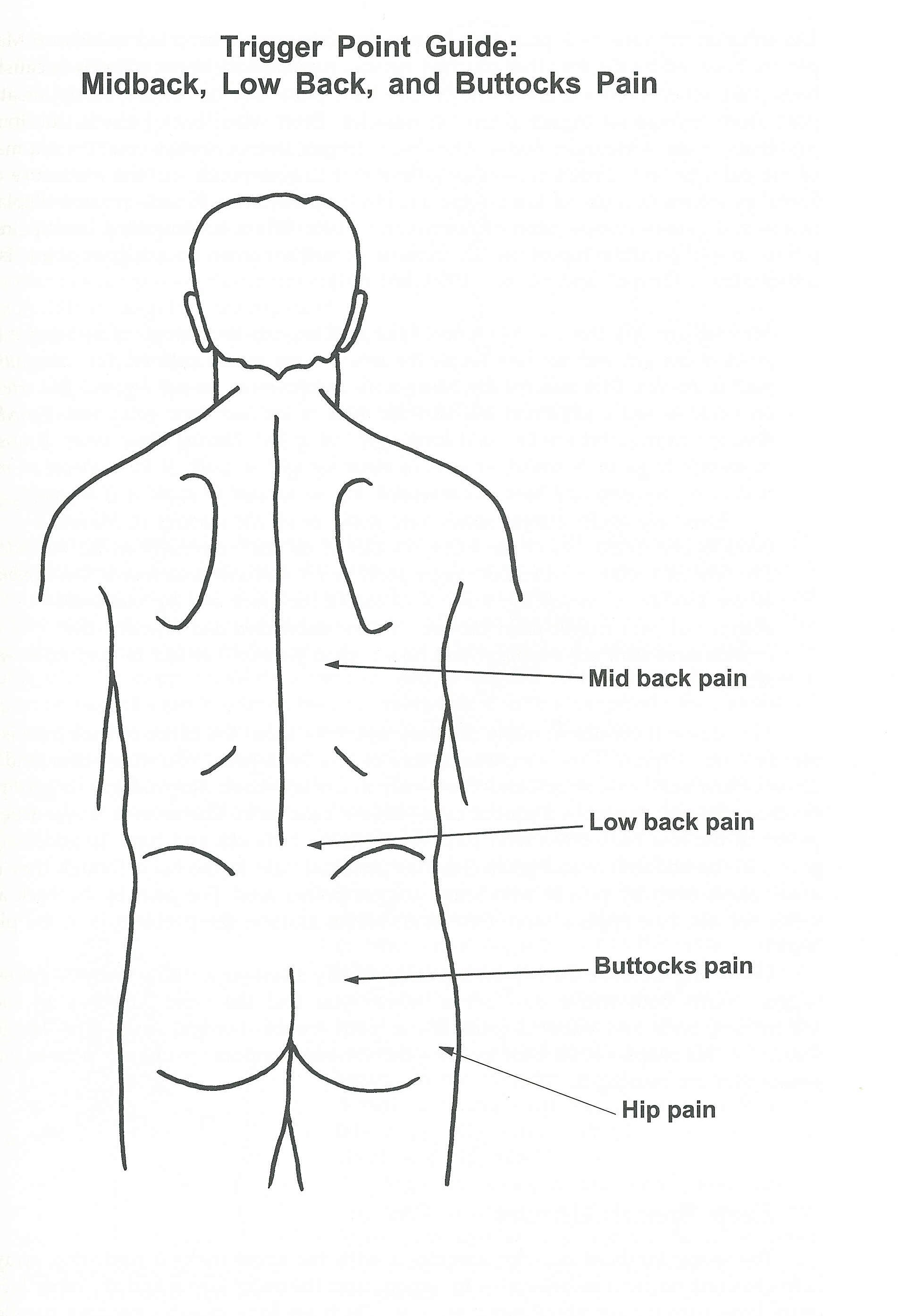 lower back exercises diagram 1987 chevy truck wiring pain