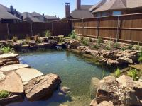 Landscape Pond & Waterfall Ideas For your Backyard | Plano ...