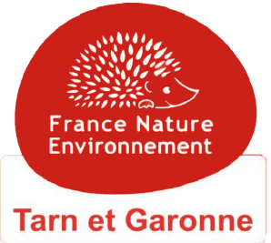 logo-fne82ico_20163