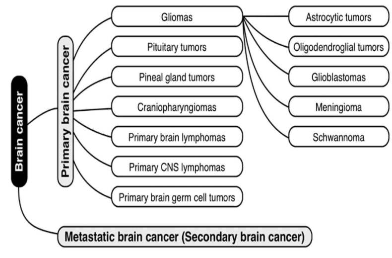 Types Of Brain Cancer