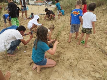Los participantes destacaron la importancia de la colaboración de todos para cuidar las dunas