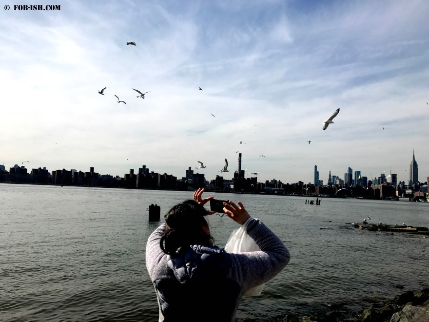 Manhattan skyline from the shores of Williamsburg, Brooklyn