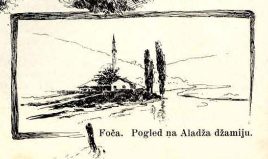 foca-1895-013