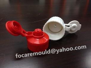 auto close flip top cap mold