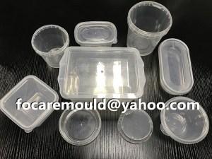 China thin wall mold maker