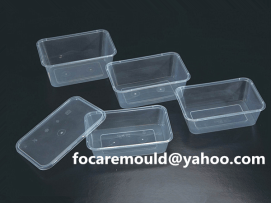 China rectangular mold thin wall lunch box