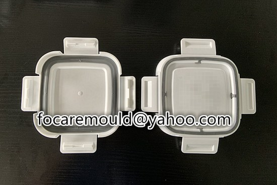 2 colour crisper mould design