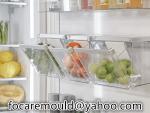freezer storage bins mold