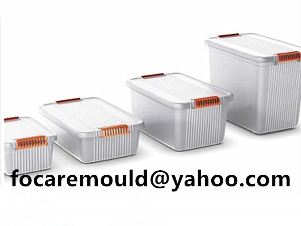 storage bins two color clip mold