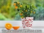 two color garden pot mold