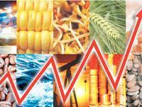 Precios de los productos básicos (de nuevo): ¿Shocks permanentes o transitorios?