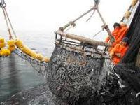 La pesca en el Perú: reflexiones de un economista