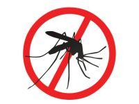 ¿Cómo prevenir los brotes de dengue en zonas endémicas con presencia de lluvias e inundaciones: el caso piurano