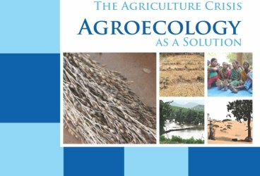 Climate Change and the Agriculture Crisis : Agroecology as a Solution