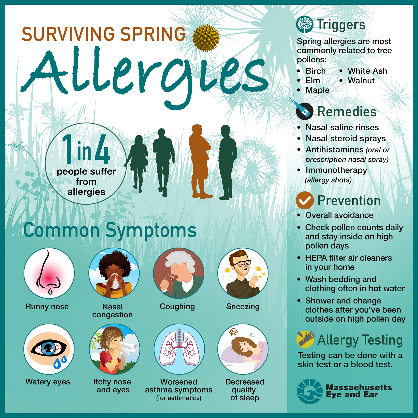 The Most Common Spring Allergies