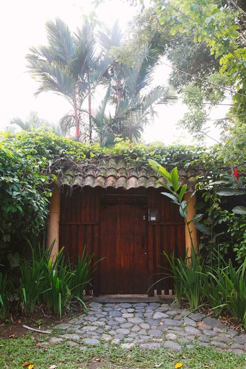 costa-rica-julia-laffaille-focusaventure-cahuita-paysage