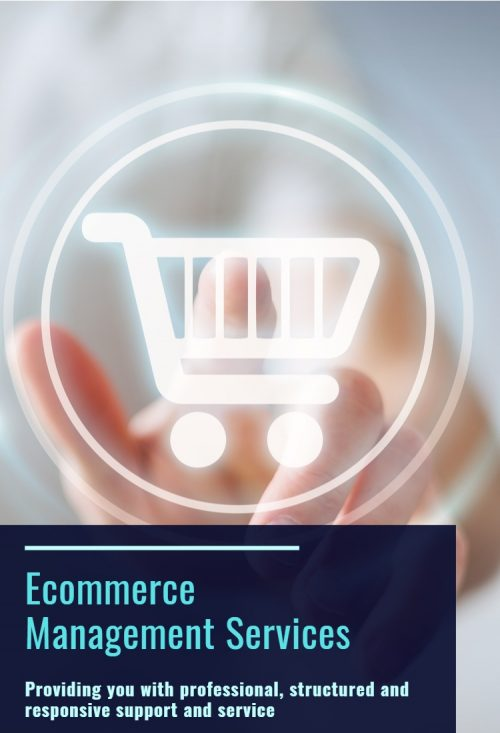 Ecommerce Services | Focus Ecommerce and Marketing