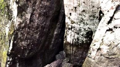 """""""Power"""" by Rachel Cancino-Neill taken on the Buffalo River Trail, Arkansas: 2015"""