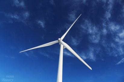 the-wind-farm-2