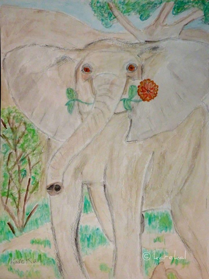 World Elephant Day Monday August 12