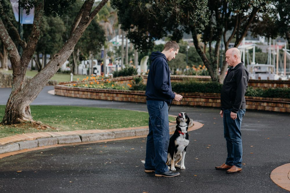 Book dog training with trainer and client