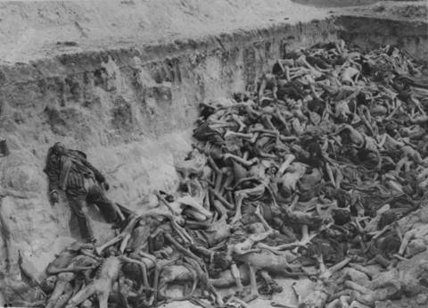 Image result for holocaust victims