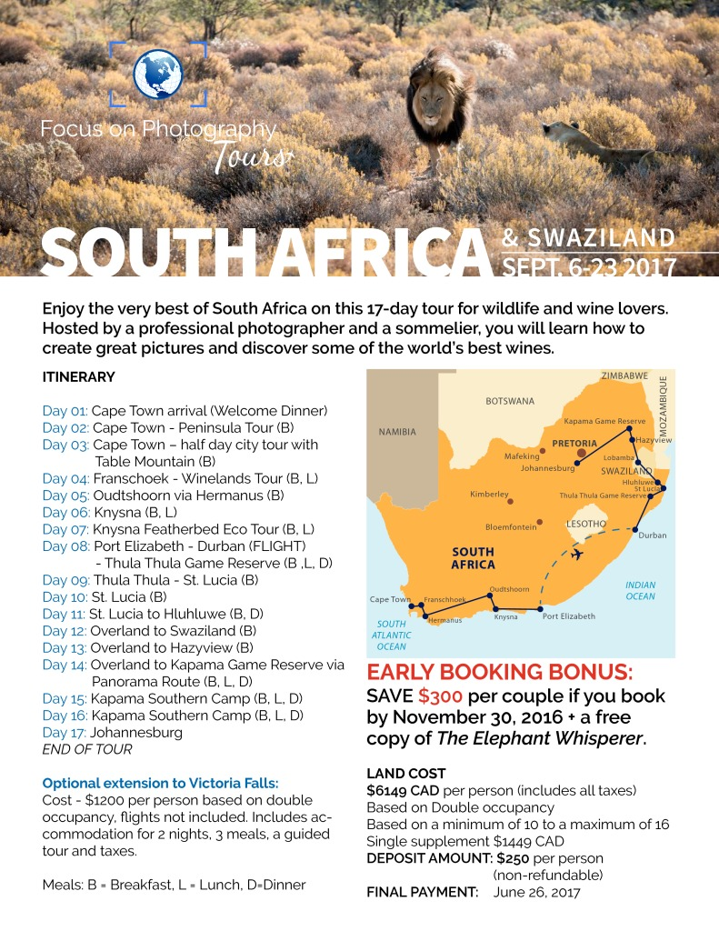 thumbnail of south-africa-sept2017-2pg
