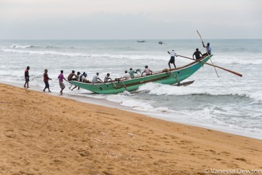 Bringing the boat back in, Wadduwa Beach, Sri Lanka
