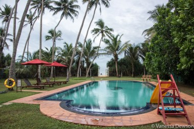 Private pool at Palm Beach Villa, Wadduwa, Sri Lanka