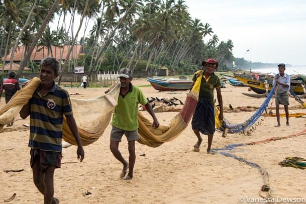 Time to clean up. Wadduwa Beach, Sri Lanka