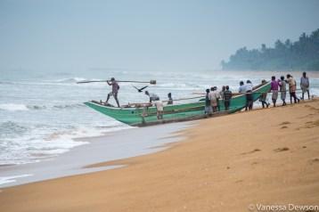 Setting out, Wadduwa Beach, Sri Lanka