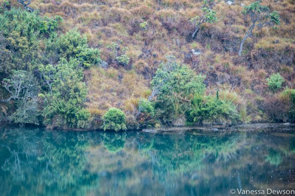 Reflection in Horton Plains, Sri Lanka
