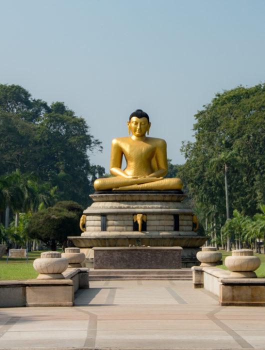 Sri Lanka Photo Tour Blog – Day 2