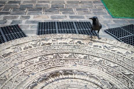 Crow on Moonstone, Gangaramaya Temple