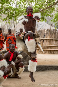 Swazi dancer