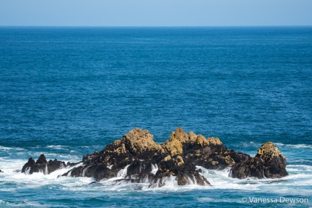 Rocks in Hermanus