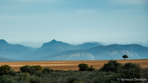 Beautiful landscape on the drive to Knysna