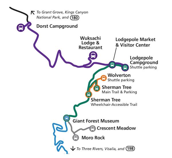 Park Shuttle sequoia national park