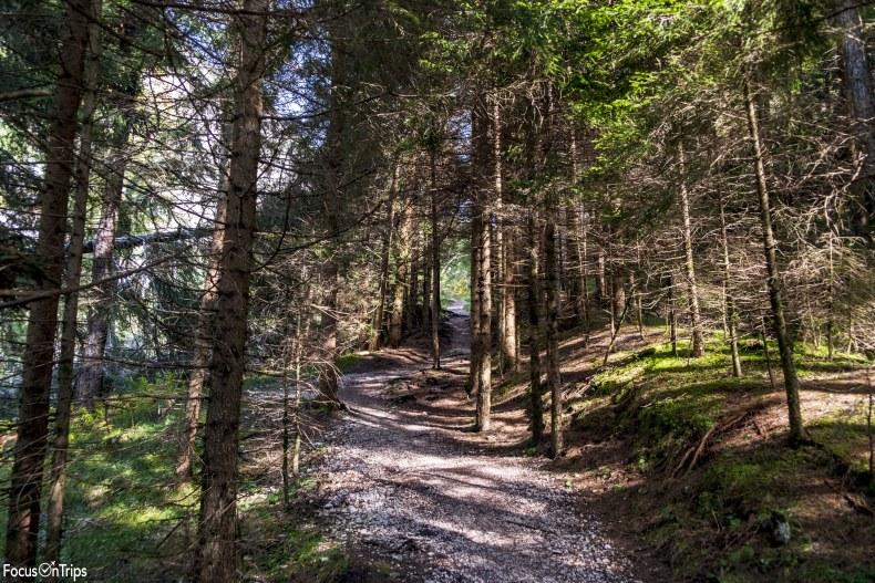 trekking Val Ciamin Rifugio Alpe di Tires