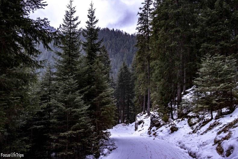 rifugio vallaccia valle monzoni