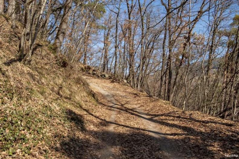 sentiero 6 bolzano