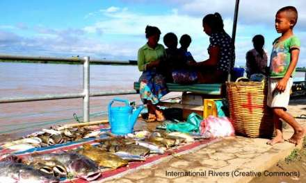Mekong under Threat: Urgent Moratorium by Heads of Government on Don Sahong Dam is Required